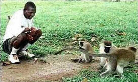世界十大獸孩,盤點被動物們所養大的10個孩子