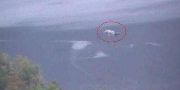 世界十大水怪之谜,尼斯湖水怪竟是天大骗局(欺骗人们60年)