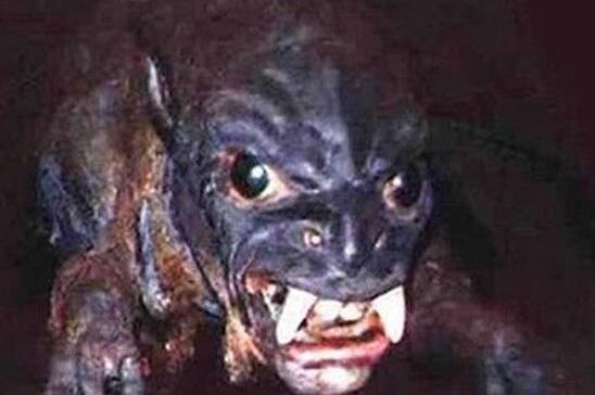 世界十大神秘未知怪兽,令人闻风丧胆的怪物(吃人吸血)
