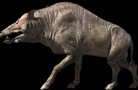 6500万年前远古巨猪,长3米重达2000斤(野牛一般)