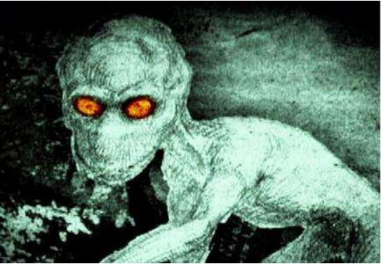 美国多佛恶魔,疑似外星生物(头大如斗眼睛为橙色)