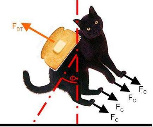 悖論學說之黃油貓悖論,永遠都是貓腳先落地(實驗過程)