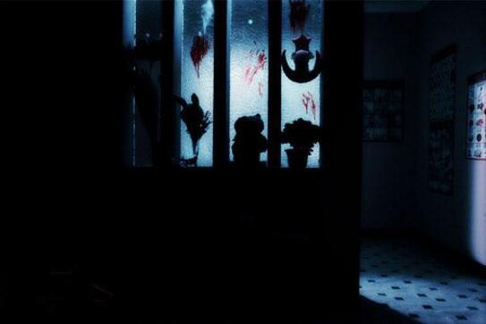 上海林家宅37号事件,凶手叶先国竟是无脑人(至今未破)