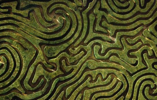 世界十大迷宫图,最复杂的迷宫曾让拿破仑迷路