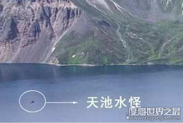 世界十大水怪排行榜,尼斯湖水怪长着大象鼻(吞食人畜)