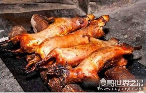 老鼠肉能吃吗,能吃而且好吃(附做法及注意事项)
