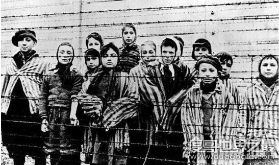 二战时最恐怖的种族清洗,纳粹进行的犹太人大屠杀
