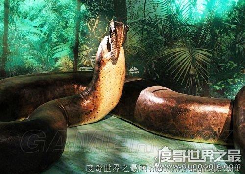 地球史上最大的蛇,塞雷洪泰坦蟒(长达15米/天下无敌)