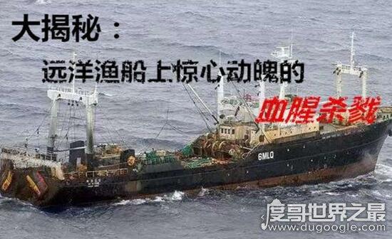 鲁荣渔2682号惨案真相,11人究竟为啥杀害22名同伴