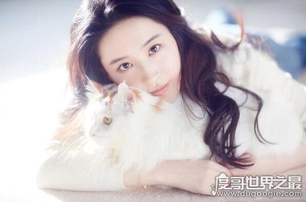 王思聪怎么评价刘亦菲,完全没演技一个表情演遍电视剧
