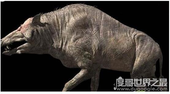 不是所有巨大的猪都叫巨猪,上古巨猪长3米重达2000斤