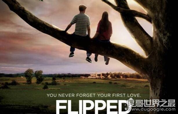 青春电影排行榜前十名,《失恋33天》排第十(看看你看过几部)