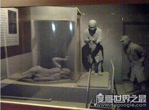 马路大是什么意思,侵华日军731污辱人体实验的称呼