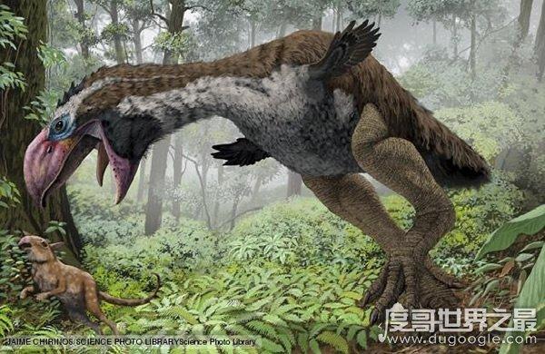 欧冠万博官网登陆已灭绝的动物,渡渡鸟疑是被人类残忍杀光