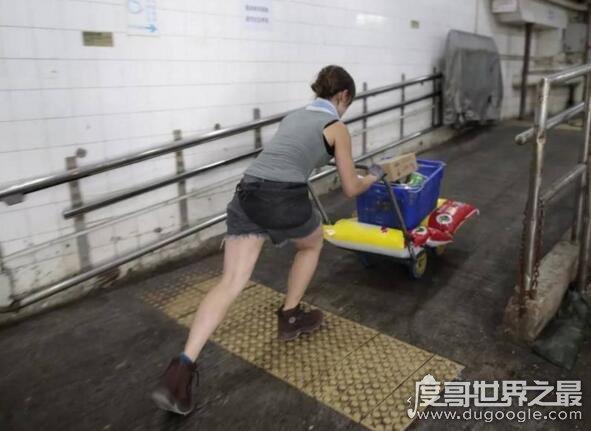 香港最性感女搬运工,明明可以靠颜值偏偏扛起了重担