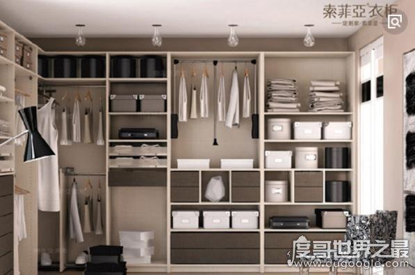 中国十大整体衣柜品牌排行榜,国内最具影响力的衣柜品牌