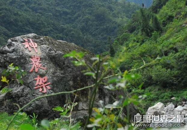 未解之谜的中国神秘事件,盘点中国有哪些未解之谜