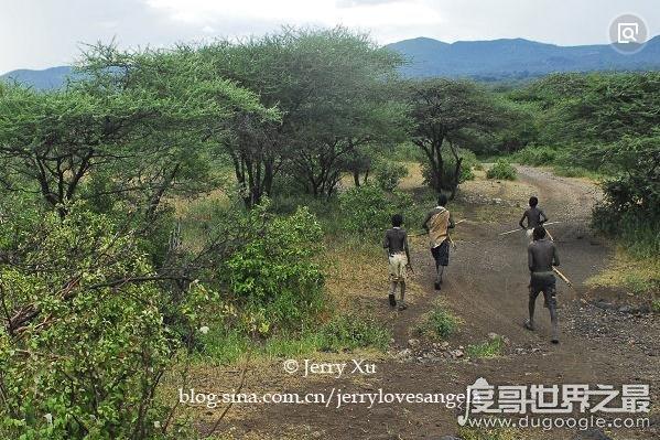野外生存最强的土著民族:布须曼人,以擅长追踪猎物而闻名