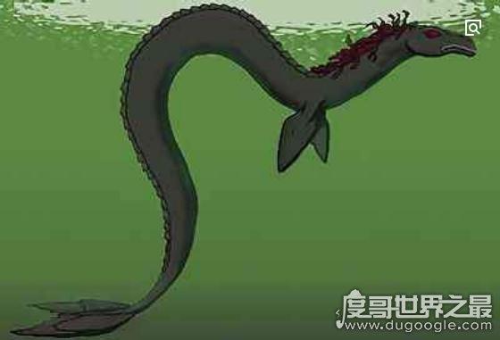 世界上真实存在的水怪,卡布罗龙(体长20米的马头蛇尾大海怪)
