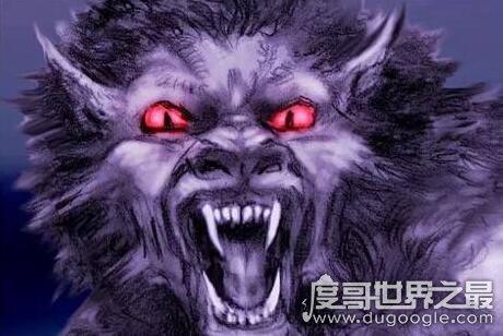 未知生物布雷路怪兽,目击者称其是身材高大的嗜血狼人