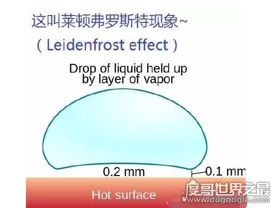 神奇的莱顿弗罗斯特效应,温差会让物体间产生水膜保护