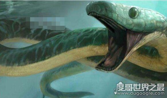 有脚的厚针龙是蛇的祖先,甚至还是传说中龙的原型
