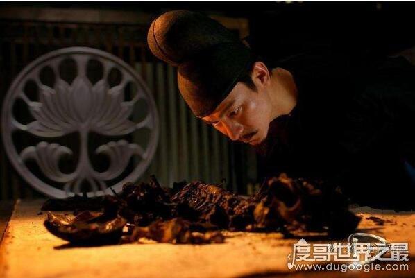 令人自燃的赤焰金龟,原型是滚山球马陆(是治病救人的药虫)