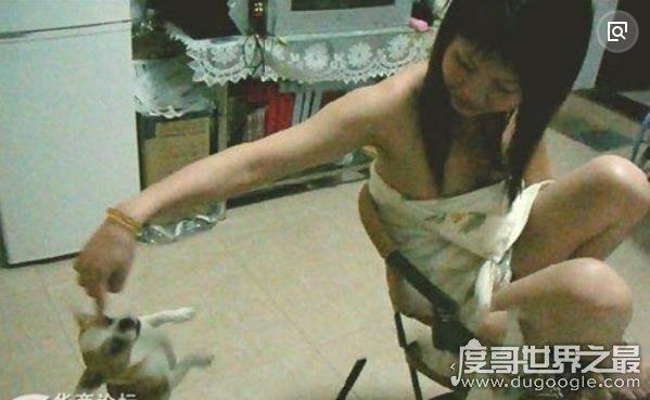 挤奶门事件图片,90后美女挤奶喂狗惊呆网友(疑造假)