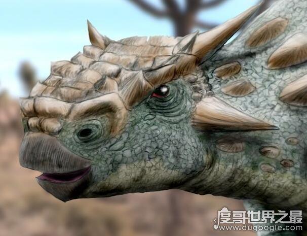 史前牛头怪甲龙,化石发现于蒙古戈壁沙漠(是种新类型恐龙)