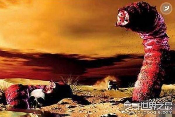 蒙古死亡之虫疑真实存在,探险家远赴蒙古戈壁追寻神秘肠虫