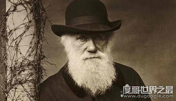 霍金推翻达尔文进化论,人类并不是进化而是本来就存在的