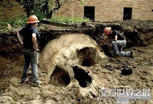 世界上有人拍到巨人照片,光是头骨就比人还高(是假的)