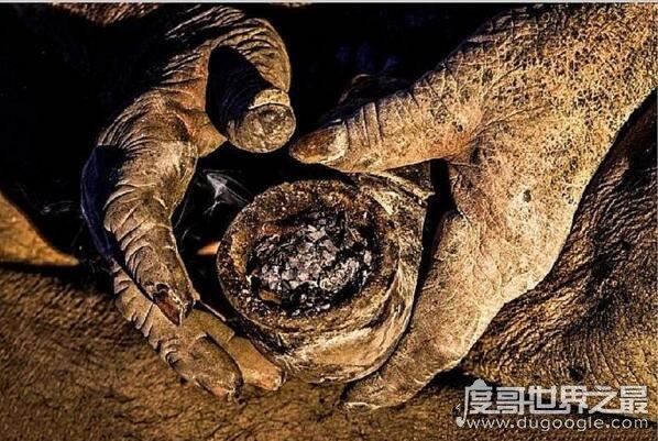世界上最脏的人,8旬老汉60年不洗澡创吉尼斯世界纪录