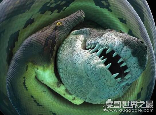 太平洋底惊现百米巨蟒,这种超级巨型怪物多次被人目击到