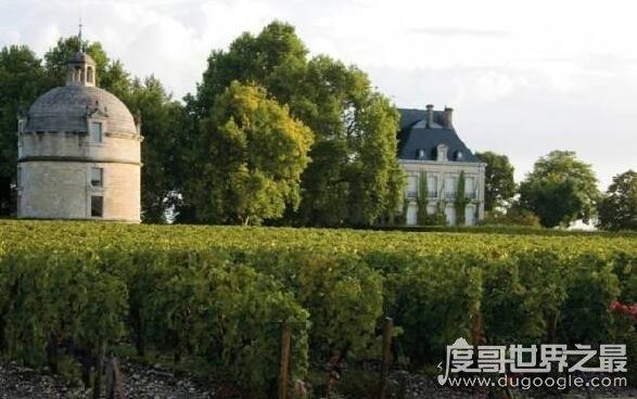 世界十大酒莊排行榜,第一是擁有800多年歷史的拉菲酒莊