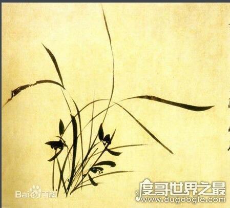 世界上最毒的草,非洲沧形草(毒性是马钱子的50倍)