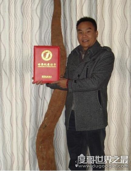 """世界上最大的野葛根,长5米/重达300斤的""""葛根王""""被挖出"""