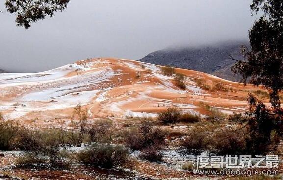 撒哈拉沙漠下雪了,世界上最热沙漠下了1米厚大雪