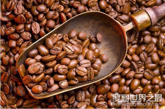 世界上最贵的咖啡豆,瑰夏咖啡比猫屎咖啡更贵(350.25美元/磅)