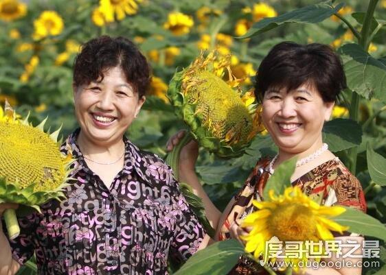 世界上最高的孪生姐妹,姐妹花平均身高超过1.98米