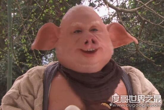 猪年央视春晚阵容强大,各路流量明星纷纷现身节目值得期待
