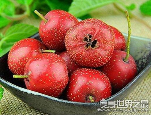 """能让你越吃越瘦的10种水果,苹果乃当之无愧的""""瘦身之王"""""""
