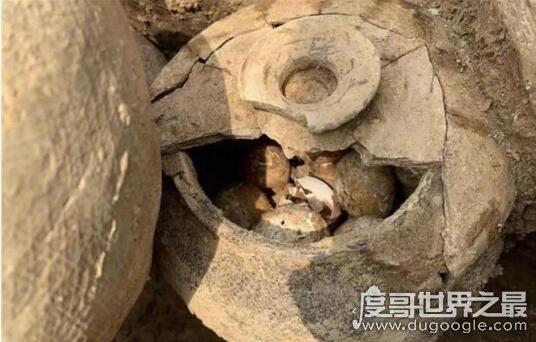 古墓中发现一罐2500年前的鸡蛋,保存完好(和正常鸡蛋没区别)