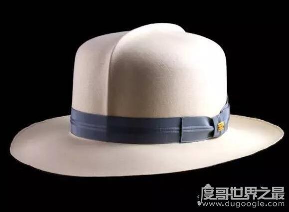 世界上最贵的帽子排行榜,最贵一款1000万美元(有价无市)
