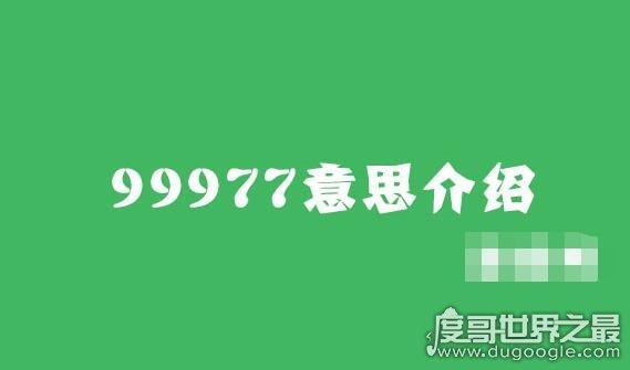 """抖音上的99977是什么意思?暗指让你""""珍惜眼前人"""""""