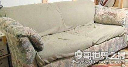世界上最贵的沙发,价值6亿竟是赃物(旧沙发中藏匿6亿现金)