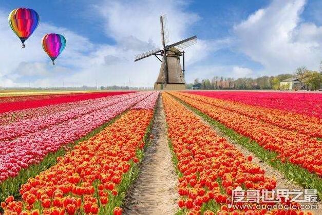 荷兰停止推广旅游,人太多所导致!(去年接待游客1900万