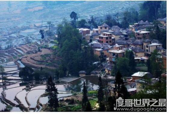 新橙艾滋病城市,云南四川等地患病人数远高于其它地区