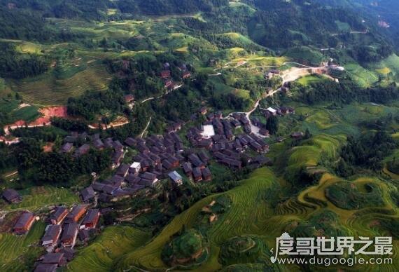 中国十大艾滋病城市,云南四川等地患病人数远高于其它地区