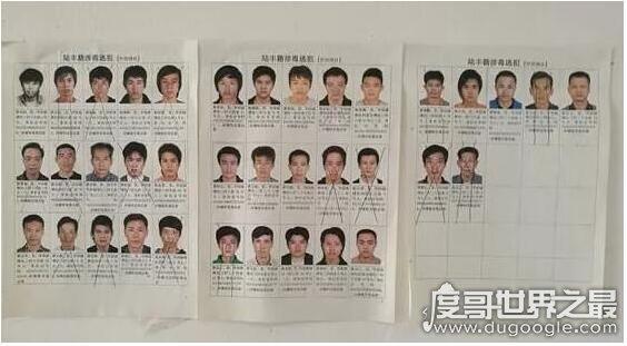 博社村制毒多少人死刑?21人被執行死刑(數百人被判刑)